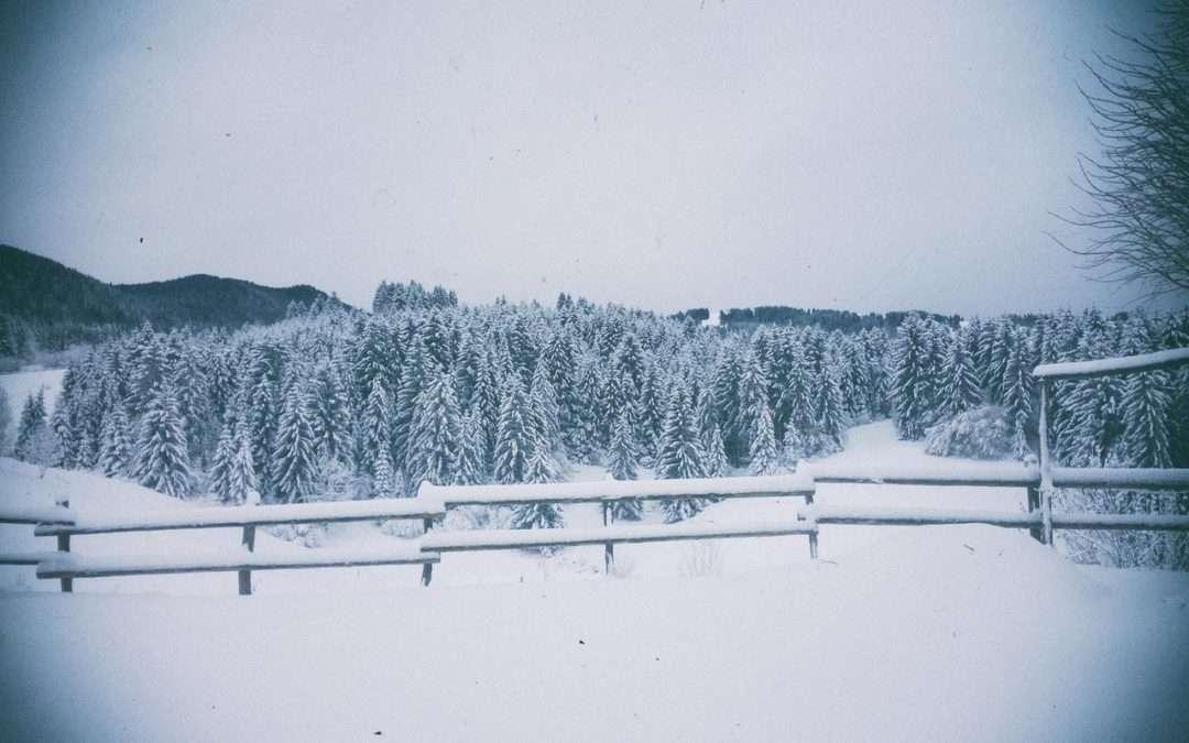 inverno malga