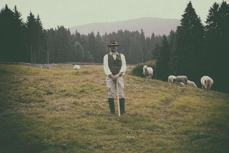 Stefano e pecore