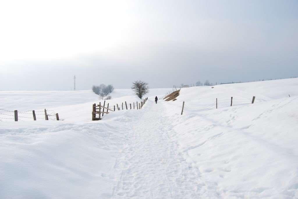trenino neve